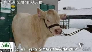 LOT 1 - vente SIMA 25 février 2019 (Villepinte 93) - Simon Genetic