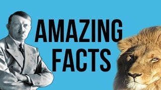 10 Amazing Facts You Probably Didn