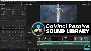 DaVinci Resolve - Sound Library (Find SFX & Music Fast)