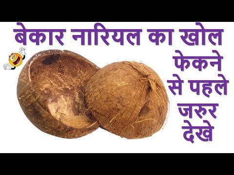 Best Out Of Waste Coconut Shell