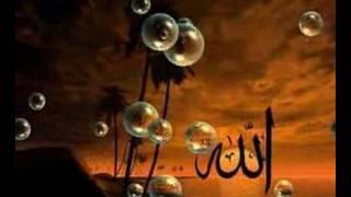 Allah hu Allah - Mehmet Emin Ay & Mustafa Demirci
