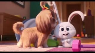 Тайная жизнь домашних животных 2 | The secret life of Pets 2 2019