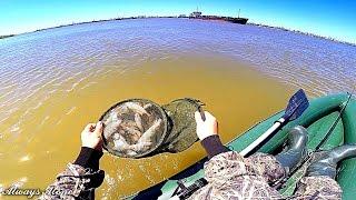 Рыбалка на реке Волга. Ловля воблы. Моя новая лодка.