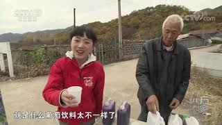 [远方的家]大好河山 鸭绿江畔的水果之乡| CCTV中文国际