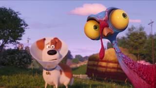 Тайная жизнь домашних животных 2 | В кино с 30 мая