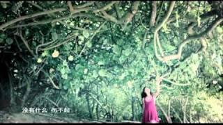 [ MV ] 曾经 -- 张柏芝.flv thumbnail