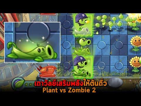 เถาวัลย์เสริมพลังให้ต้นถั่ว Plant vs Zombie 2