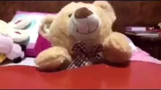 Video QUIZAS NO visto de gibby | Yo soy fan de Gibby