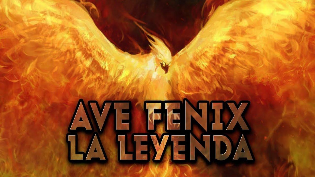 El Ave Fenix Phoenix Renace De Las Cenizas Y El Fuego Mitologia
