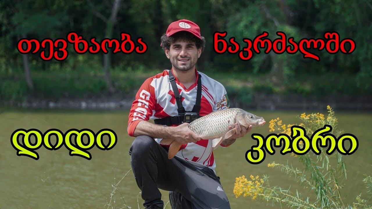 თევზაობა ნაკრძალში დიდი კობრები