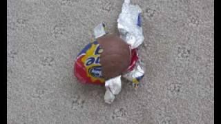 The Mini Eggscape