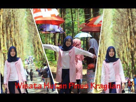 WISATA MAGELANG (TOP SELFIE) L Hutan Pinus Kragilan #1