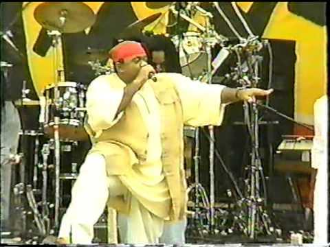 Biggie Irie Live @ Reggae On The River