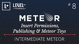 Intermediate Meteor Tutorial #8 - Insert Permissions, Publishing & Meteor Toys