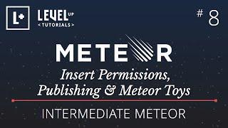 Intermediate Meteor Tutorial #8 - Insert Permissions, Publishing & Meteor Toys