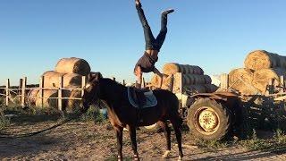 VLOG#54 - Handstand on a Horse