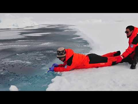 Sea Talk - Arctic Research at the University of Delaware