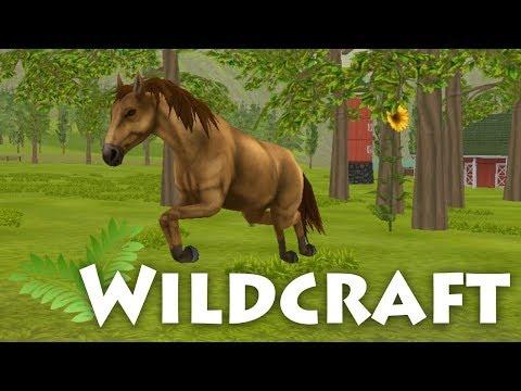 Life As A Wild Horse?! 🌿 WildCraft • #2