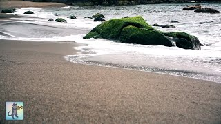 2 HOURS of Relaxing Ocean Waves • Beautiful Sea Sounds • Gentle Soothing Sound of Ocean (No Music)