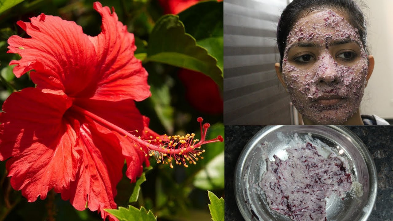 Hibiscus Flower Face Pack