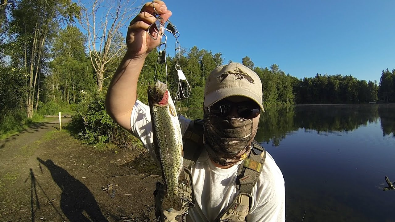 how to catch hatchery trout in your local pond - youtube, Fly Fishing Bait