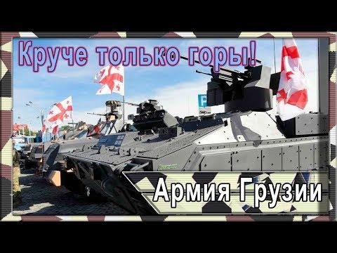 Армия Грузии сегодня. Состав ВС на 2019 год.
