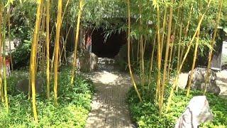 Small Japanese Zen Garden, Arcen, the Netherlands