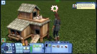 Fowl and Feathers Chicken Coop Gameplay  The Sims 3