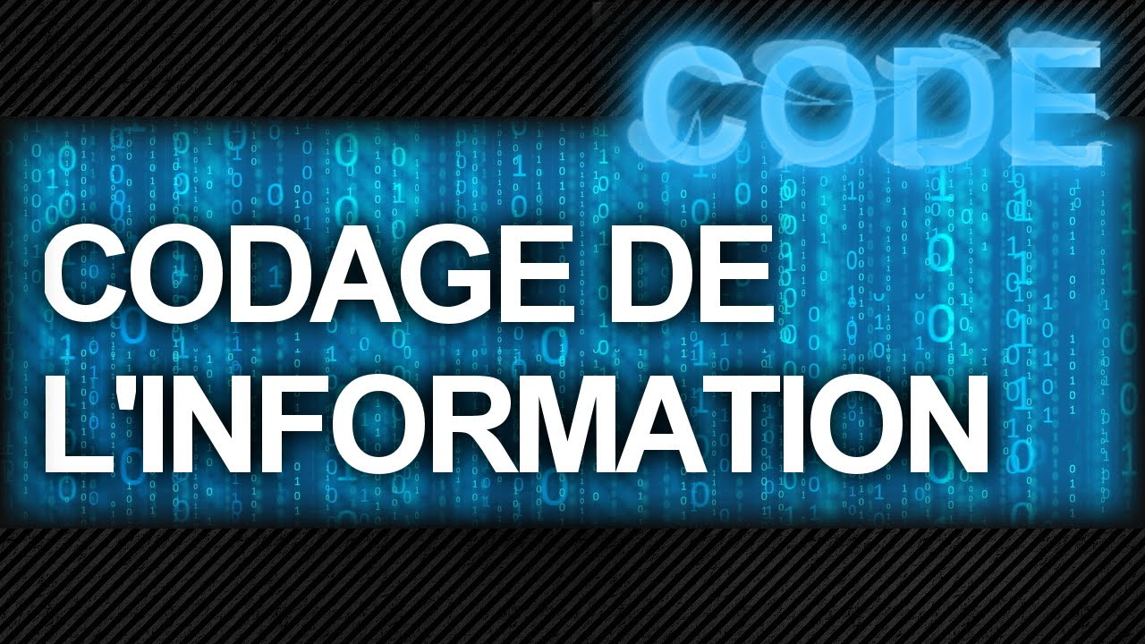 """Résultat de recherche d'images pour """"codage de l'information"""""""