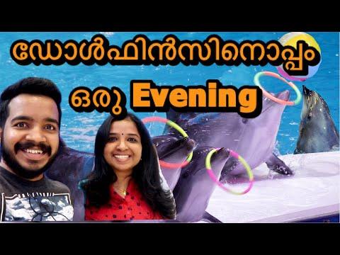 Dolphin Show II Dubai dolphinarium II Malayalam Vlog