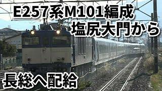 【E257系M101編成 長野配給 明科駅】