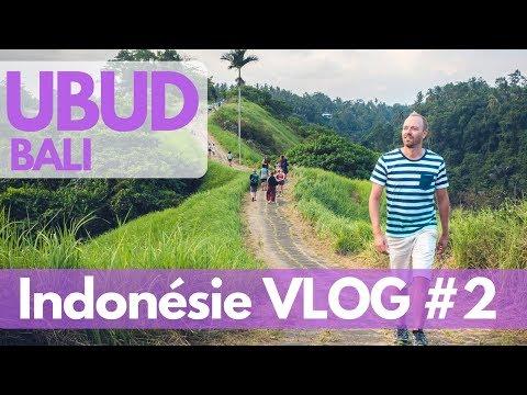 Visiter UBUD entre temples et rizières - VLOG Indonésie 02