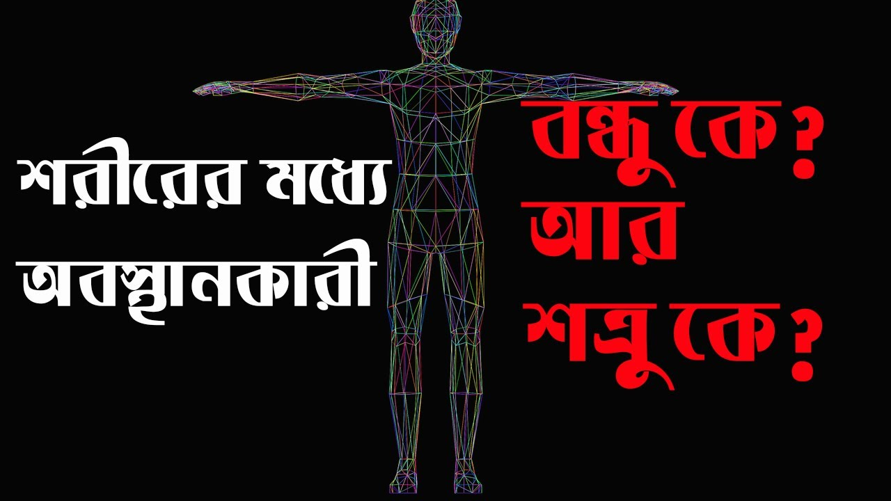 আপনার শরীরের বন্ধু কে? আর শত্রু কে? Which is good for our body? Drugs BD.