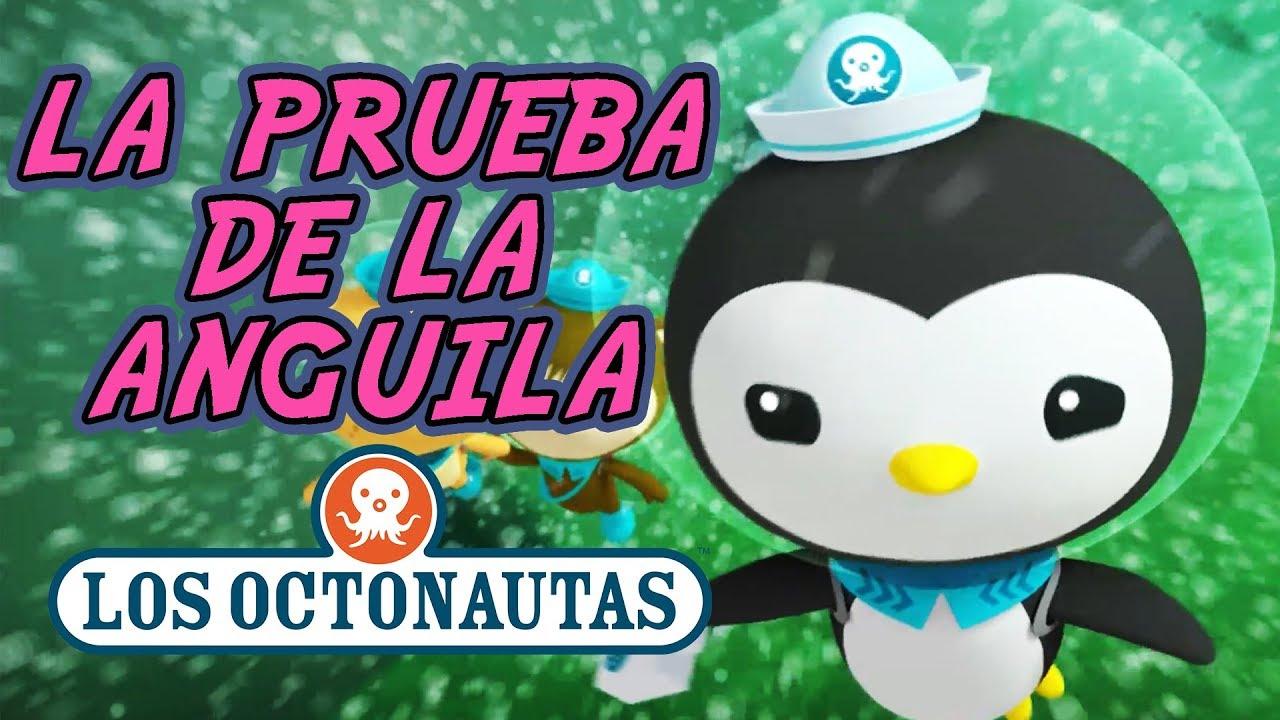 Los Octonautas Oficial en Español - Las Prueba de la Anguila | Episodio 37