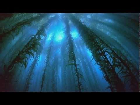 Above & Beyond - Home (Original Mix)