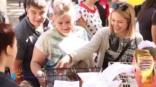 Приют Лучший друг на праздновании Дня города Ставрополя и края