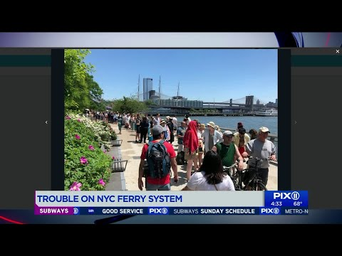 NYC Ferry customers wait in lines for hours Sunday of