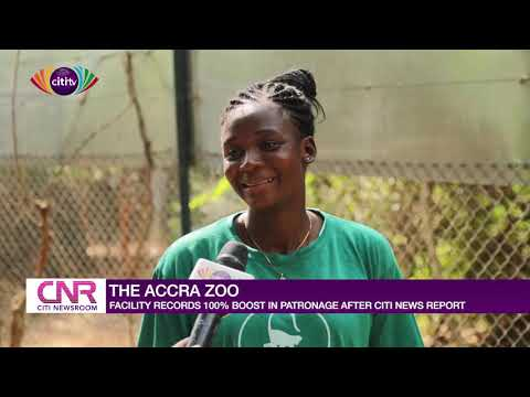 Accra Zoo: Facility records 100% boost in patronage after Citi news report