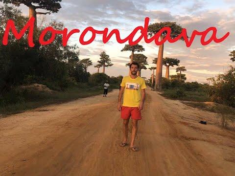 Morondava Madagascar, një botë tjetër.