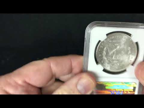 NGC MS63 Morgan Dollars - 10 Coin Set