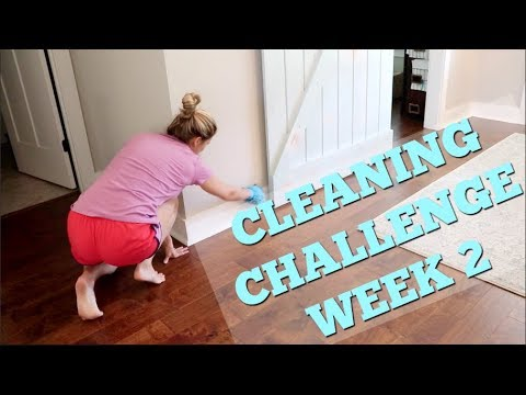 CLEAN WITH ME CHALLENGE WEEK 2 // CLEANING CHALLENGE // DOLLAR TREE CLEANING