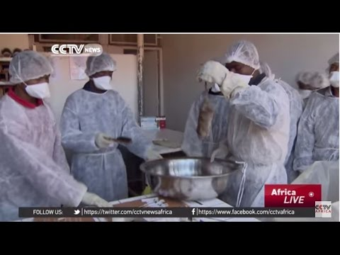 Madagascar Battles 'The Plague': Experts Working To End the Plague