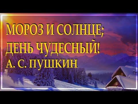"Классика на все времена ""Зимнее утро"" А. С. Пушкин красиво читает Леонид Юдин"