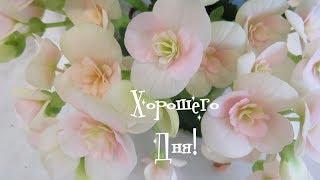 Хорошего Дня и Много Улыбок)))))