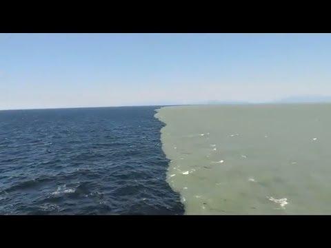 2 महासागर यहाँ