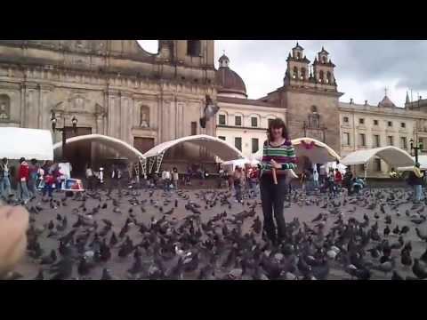 Bolivar Square Bogota Mind the pigeons! - Cuidado con las palomas en Plaza Bolivar, Bogotá Colombia