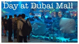 Day at Dubai Mall :) [Feb 21st 2015 | Vlog #6]