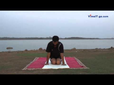 ह्रदय रोग के लिए ५ योगासन  / 5 Yoga poses for Heart in Hindi