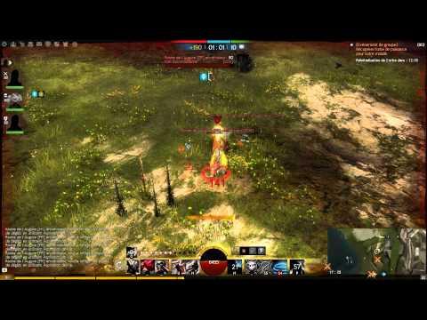 Voleur Pvp Guild Wars  Build