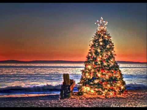 Tropical Christmas.2015 Holiday Tropical Christmas Video Windowsphonelarge